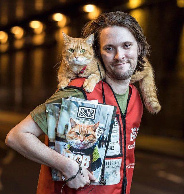 Voici l'histoire magnifique du chat bob et de son maitre. Ils se sont sauvés mutuellement!