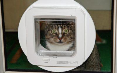 Quels sont les avantages ou inconvénients d'une chatière électronique ?