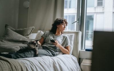 Chat en appartement : les secrets de la réussite
